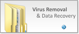Virus Removal & Data Recovery